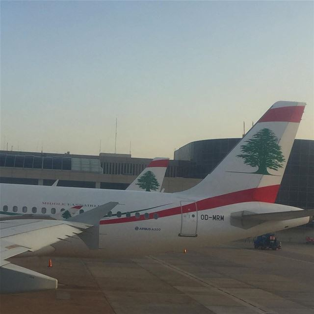 photography plane airline travel travelphotography lebanon ... (Beirut–Rafic Hariri International Airport)