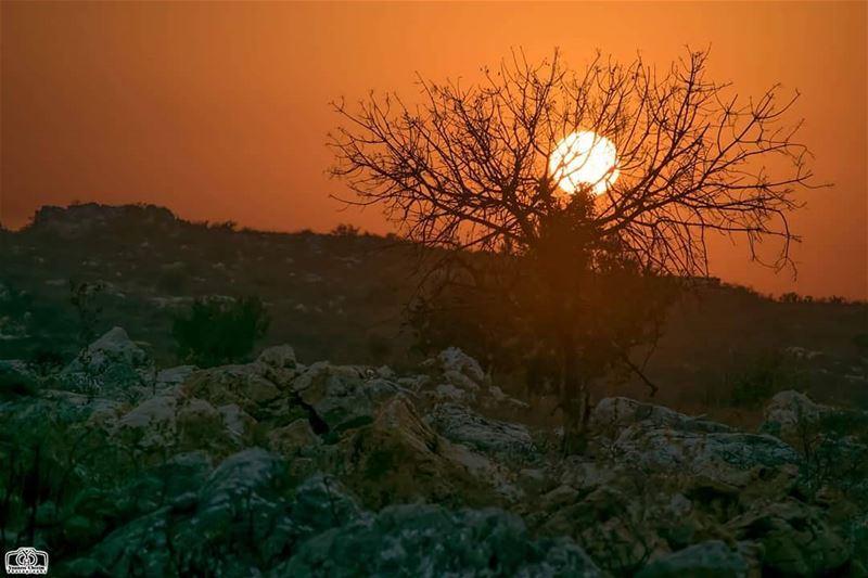 بعد كل مغيب يولد فجر جديد و بعد كل إنكسار يولد أمل جديد sun sunset ...