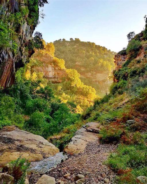 Raw Baskinta baskinta lebanon hike hiking explore livelovelebanon ... (Baskinta, Lebanon)