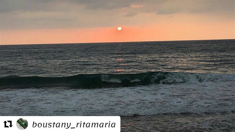 Repost @boustany_ritamaria (@get_repost)・・・Beauty is all around you....