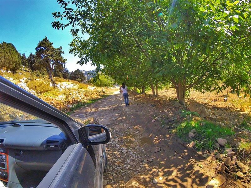 Back on the road to get rid of the load. roadtrip nature naturelover ...