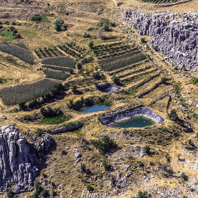 .–––––––––––––––––––––––––––––––––––Location: Kesserwan Lebanon–––––––