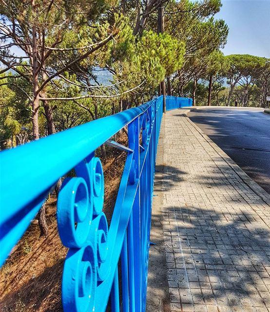 Integrated in nature sidewalk marchaaya brummana naturephotography ... (Mar Chaaya Broumana)