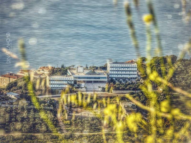 Tout grandit en se changeant en souvenirs, mais un lieu natal n'a jamais lâ (USJ CEU Liban Nord)