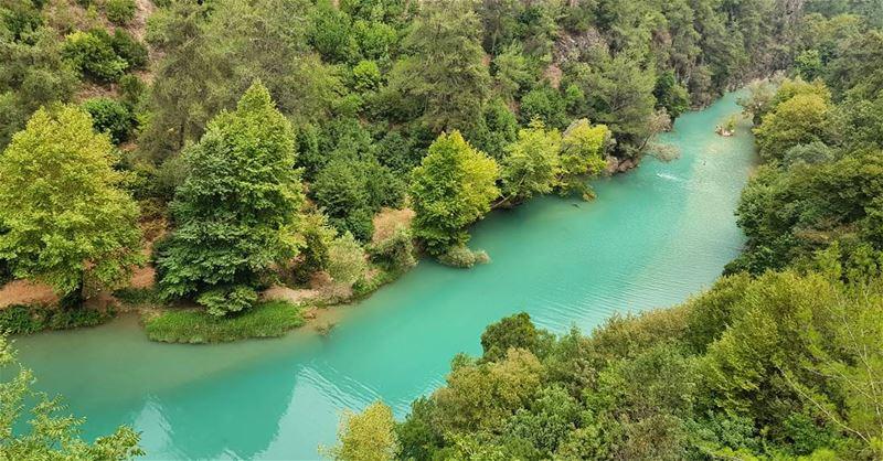 "🌱""Nature is the art of God""; Sir Thomas Brown🍃 nofilter hiking ... (Chouwen)"