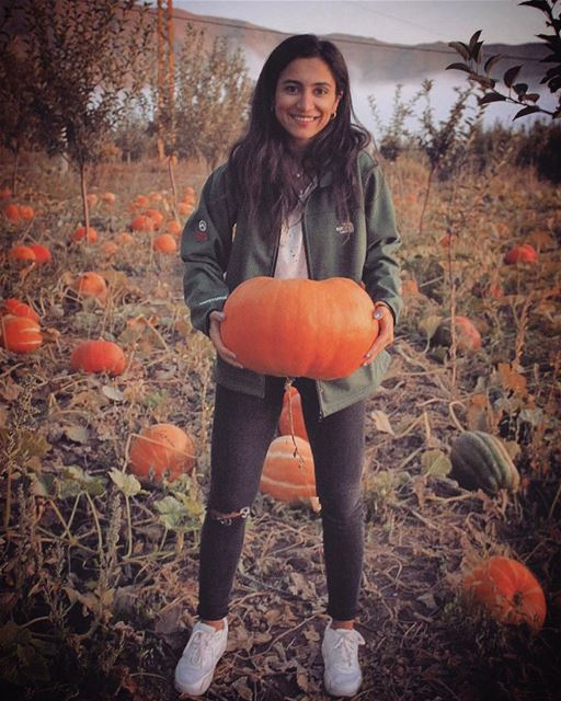Yesterday's pumpkin picking 🎃 🍁🍂