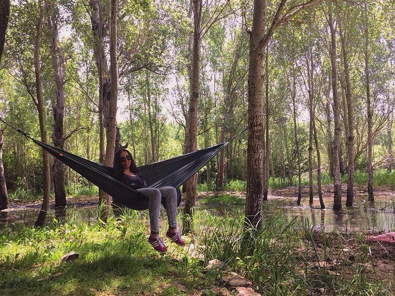 الشمس مشرقة والعصافير تزقزق🌳.... hammocktime hammock mothernature ... (Abdelli, Liban-Nord, Lebanon)