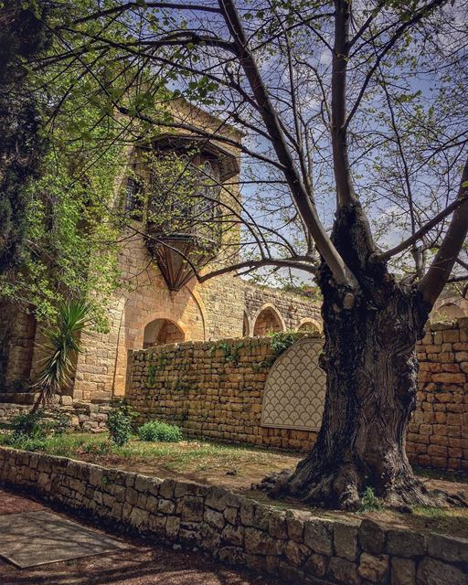 Edens of the past. Their kings and queens they outlast. Gardens in heaven... (Beit Ed-Deen, Mont-Liban, Lebanon)