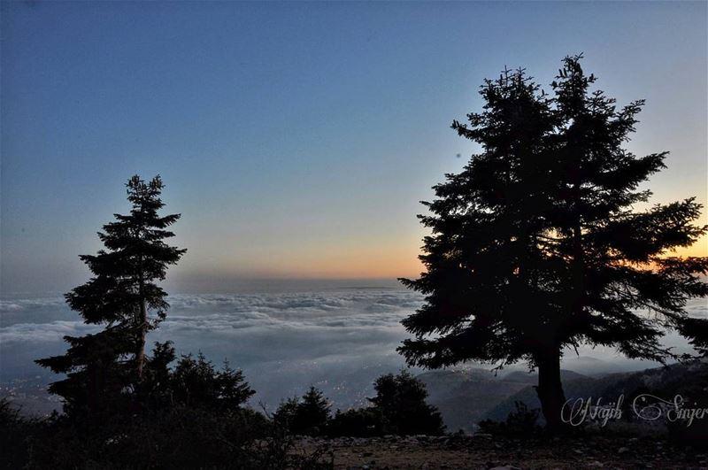 qamouaa sunset fog woods clouds akkar hiking hikingadventures ... (القموعة-عكار العتيقة)