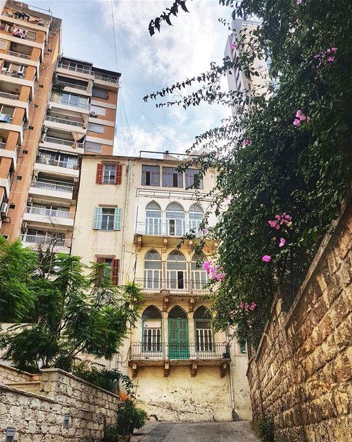 EN⬇️ Наши с подругой прогулки по Бейруту можно смело опубликовать сборнико (Beirut, Lebanon)