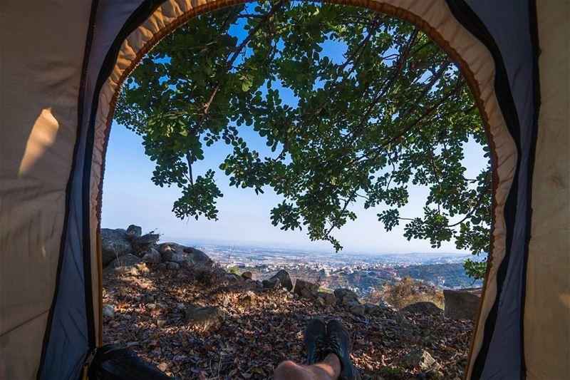 Under tree shade, over Akkar plain lebanon ... (Bqarzla, Liban-Nord, Lebanon)
