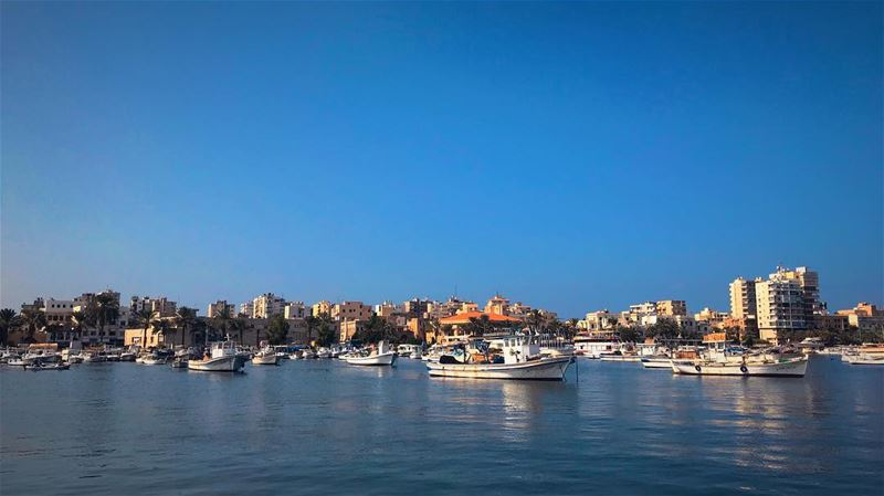 Tripoli, The second capital of Lebanon. port sea shore boat boats ... (طرابلس)