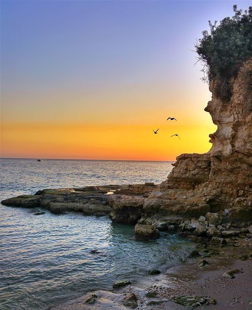 Sunset 😍 lebanon nature naturelovers natureporn landscape ... (Al Fidar, Mont-Liban, Lebanon)