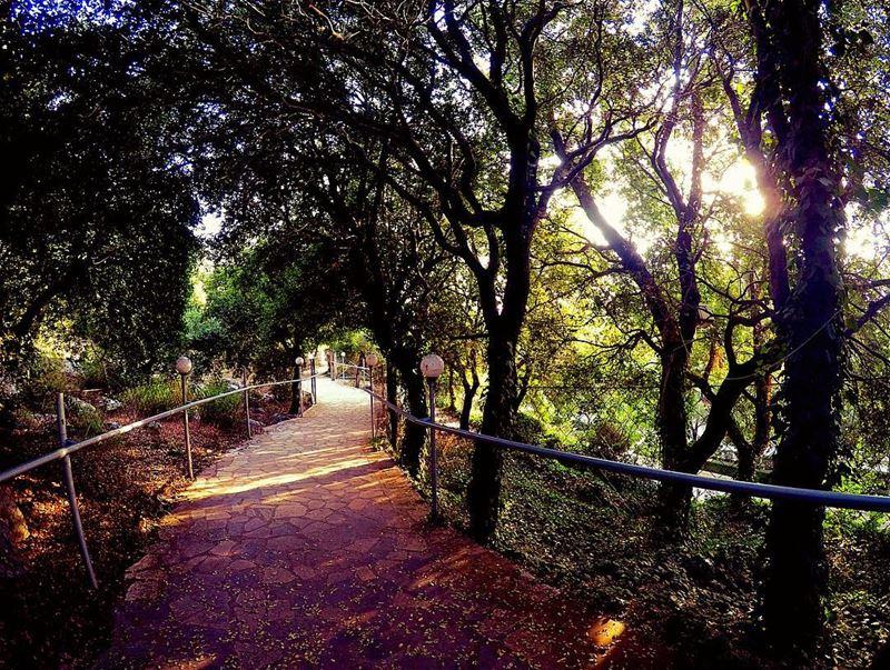 Walking by faith 🤞🏻 meziara zgharta lebanon northlebanon path ... (Miziâra, Liban-Nord, Lebanon)