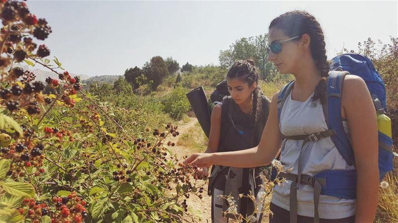 Wild, sweet and juicy.👅🌈📷 @johnnybaakliny.. wildberries hiking ... (El Qammoûaa)