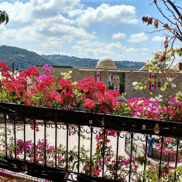 Love these bougainvilleas. flowersofinstagram landscapingdesign ... (Dayr Al Qamar, Mont-Liban, Lebanon)