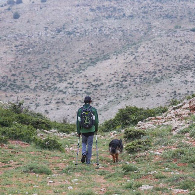 Share the world you love with the ones you love. 🚶🌏🐕 mikesport dog ...