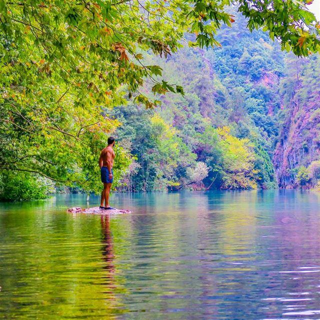 Happiest man on Earth 🌳🍁💧🌿🌾 comfortzone island hike lake river ...