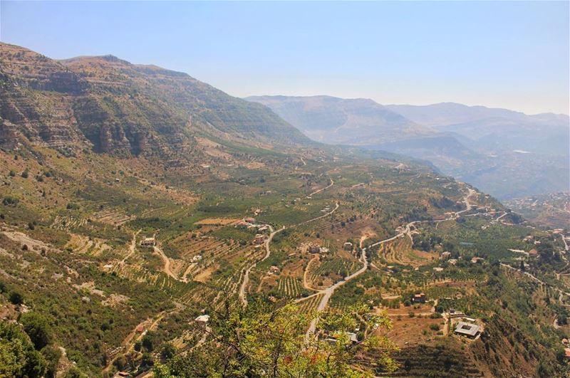 All green, everywhere 🌳🌱... (Akoura, Mont-Liban, Lebanon)
