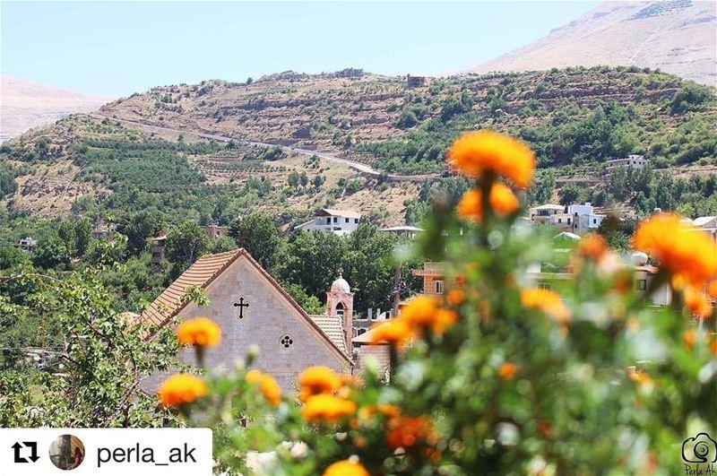 onlyfiliban Repost @perla_ak (@get_repost)・・・Thank You lebanon ... (Bekaa Kafra)