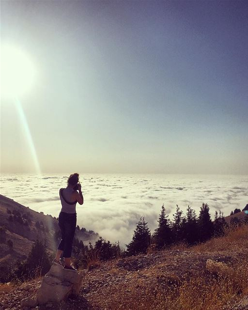 We take photos as a return ticket to a moment otherwise gone.. ☁️🌲☁️... (Al Shouf Cedar Nature Reserve)