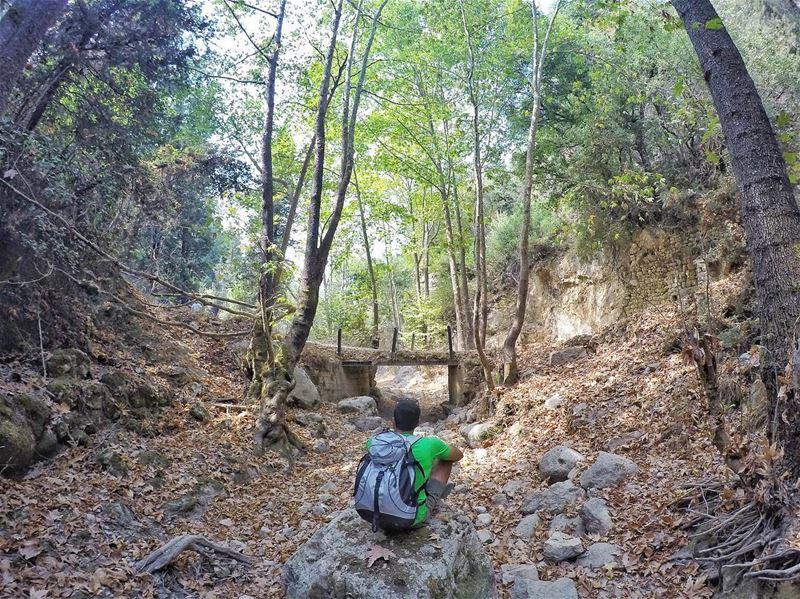autumn🍁 hiking hikingadventures hiking4fun hikingtime hikingday ...
