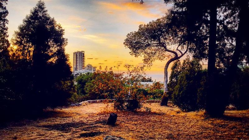 @tatiana_chahine sunset sunsets sunsetstrokes nature naturephotography... (American University of Beirut (AUB))