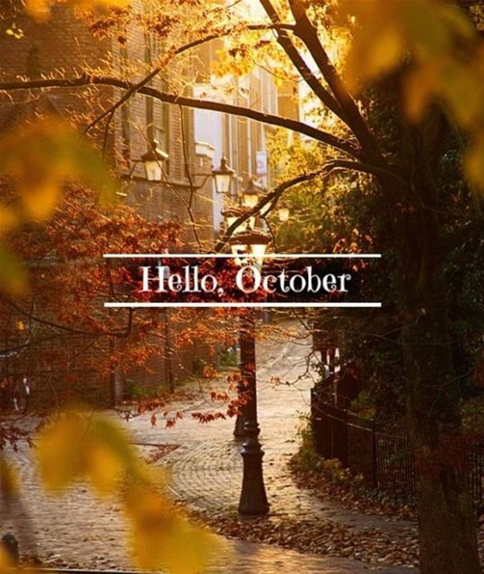 Hello OCTOBER 👋🏻🍁🍂... goodmorning morningpost october...