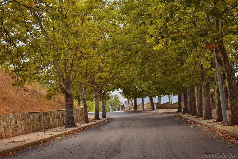 المواطنون والأرصفة يعرفون جيداً،، ان الذي يداس ليس بالضرورة شارعاً 👌👌 ... (Sawfar, Mont-Liban, Lebanon)