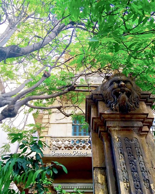 nostalgia old oldhouse lebanonhouses heritage visitlebanon beirut ...