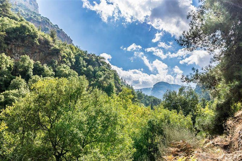 Location: Wadi Qannoubine, Lebanon Date: 01-10-2017Instagram : @jadmakar (Wadi Qannubin, Liban-Nord, Lebanon)