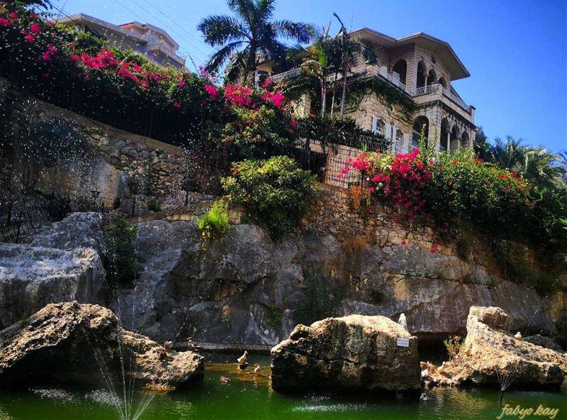 _______________________________________Location ; jounieh/LebanonCamera... (Joünié)