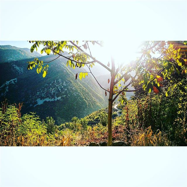 Rise and shine. sunrise  nature  mountainslovers  jabalmoussa  autumn🍁 ...