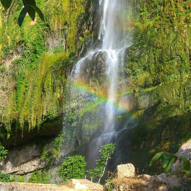 😍 lebanon nature naturelovers natureporn landscape follow4follow ... (Jezzine Waterfall)