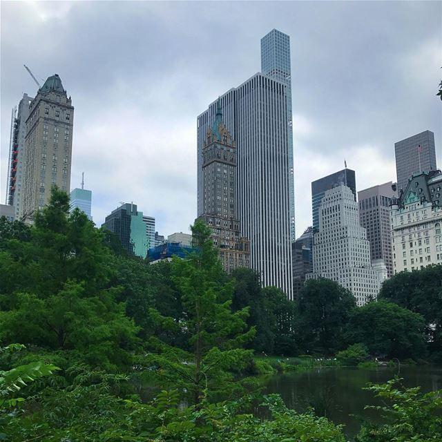[CENTRAL PARK, NEW YORK CITY] nyc centralpark usa travel travelgram ... (New York, Central Park)