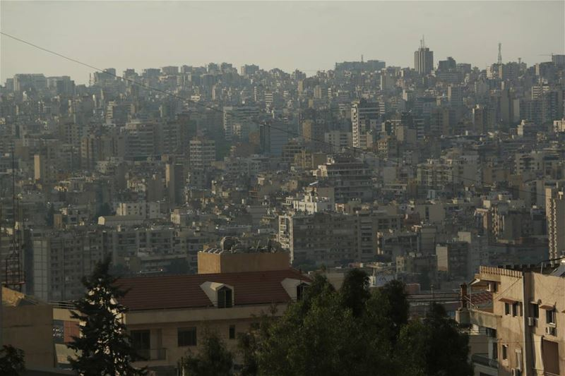 Another look down on Beirut... This time from backyard hazmieh ...... (The Backyard Hazmieh)