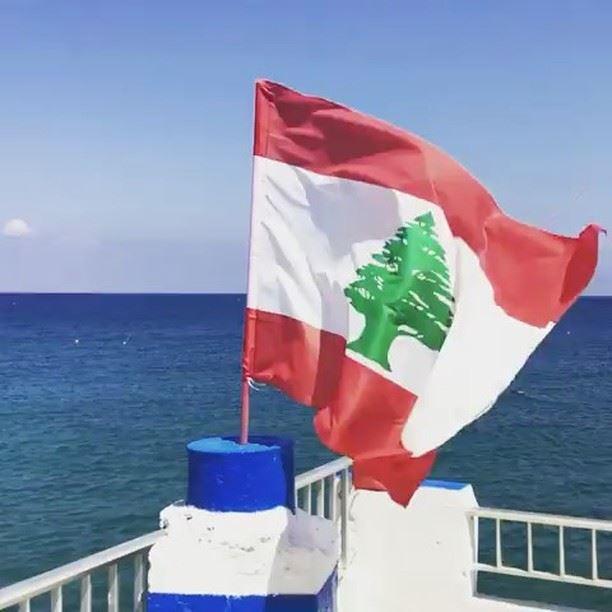 Quem concorda que essa é a bandeira mais bonita do mundo? Vídeo...