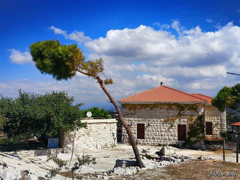 ______________________________________ morning thursday lebanonhouses... (Smar Jubayl, Liban-Nord, Lebanon)