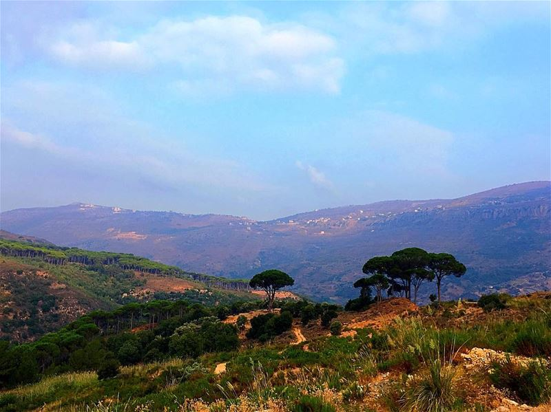 Life is always better when I hike 🌲⛰🌳 hiking jezzine bisri ... (Jezzîne, Al Janub, Lebanon)