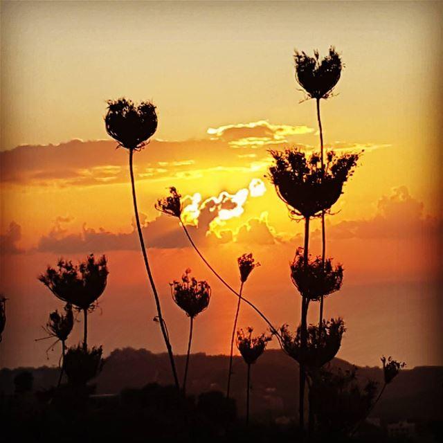A sunset on the hills of Bkechtine ! tourleb tourlebanon lebanon ... (Bkechtîne, Mont-Liban, Lebanon)