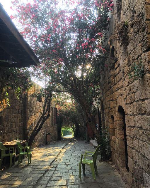 Beautiful byblos livelovelebanon livelovebyblos jbeil ❤️💚🖤 (Byblos - Jbeil)