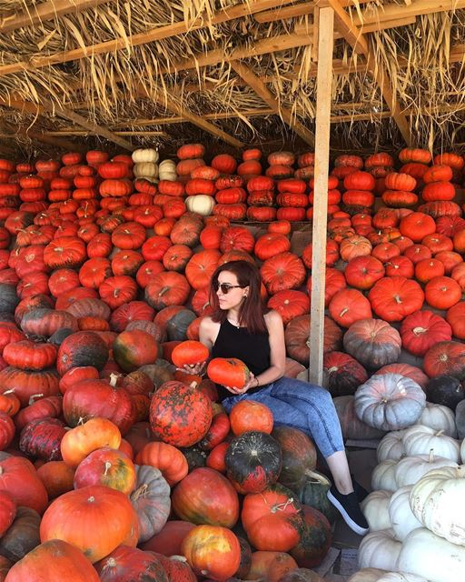 It's Pumpkin Season ... 🎃 october autumn autumncolors pumpkin season... (Aâna, Béqaa, Lebanon)