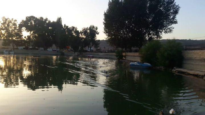لما يجو الوزات من اخر الدردارة على الاكل 😂😍 south lebanon lake ... (Al Khiyam, Al Janub, Lebanon)