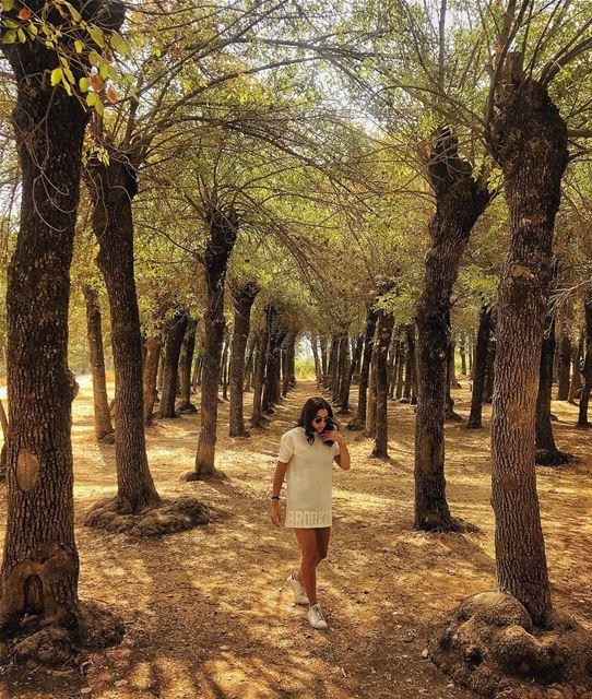Leave me where i belong............ nature natuelover autumn ... (Deir Te3Neyel)