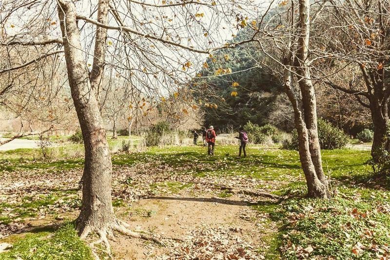 Oyoun El Samak, Lebanon lebanon hiking nature outdoors ... (3youn el Samak)