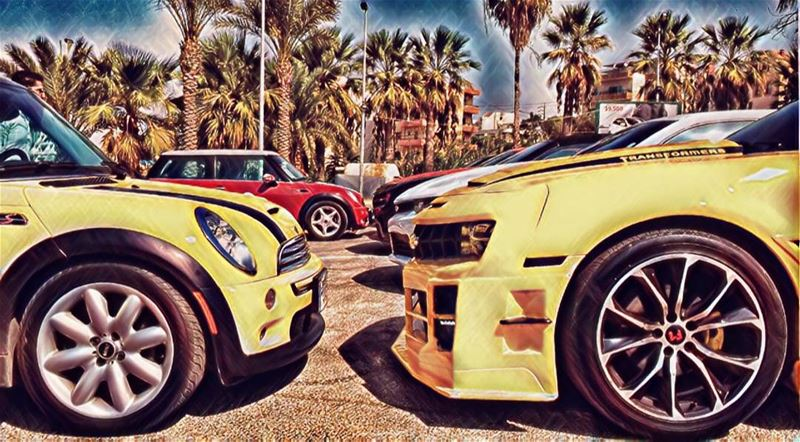 octobe_ride byblos camaro minicooper nice vibes cute yellow ... (Byblos - Jbeil)