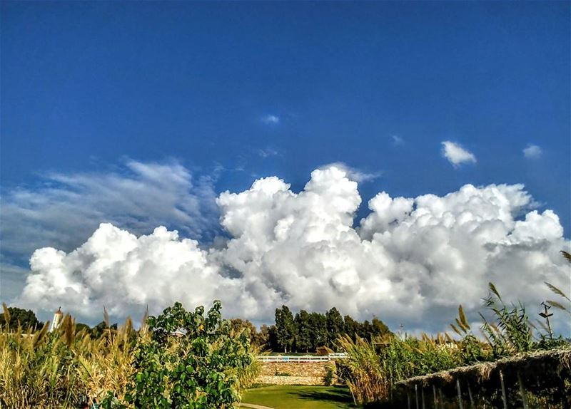 When the Clouds Tell you Stories...By Ghassan_Yammine livelovelebanon ...