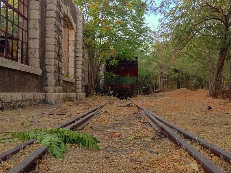 🏚🚊🌳. train rail trainstation greenery fall old rust riyaq ... (Riyaq, Béqaa, Lebanon)