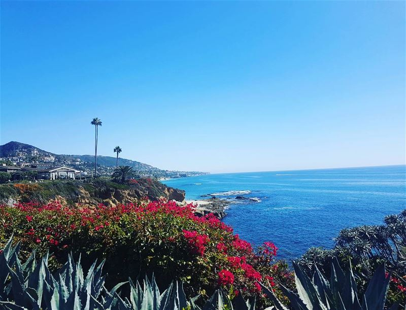 I have come to believe that this is a mighty continent which was hitherto... (Laguna Beach, California)