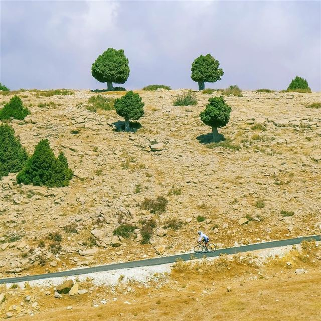 "Cycling the ""Lezeb road"" (`Akkar, Liban-Nord, Lebanon)"
